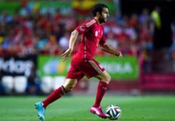 Cesc Fabregas, Spain Friendly, 2014