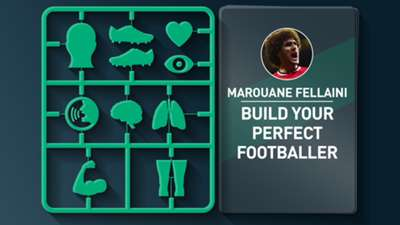 Marouane Fellaini's ultimate footballer