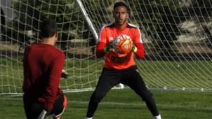 Pedro Gallese Peru training session 10102016