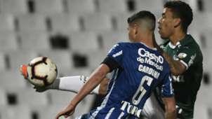 Tomas Cardona and Marcos Rocha Godoy Cruz vs Palmeiras Copa Libertadores 07232019