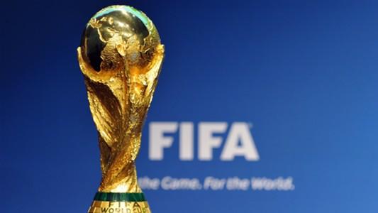 Trofeo FIFA World Cup 2014 20102011
