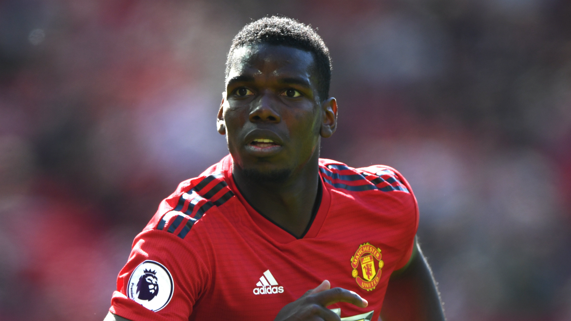 e63ed1f9f  Pogba would be the ideal player  - Marchisio urges Juventus to bring back  former star