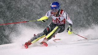 Shiffrin-Cropped