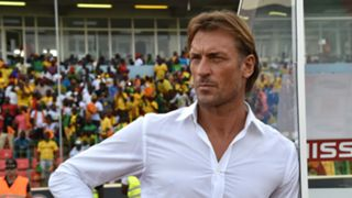 HerveRenard - Cropped