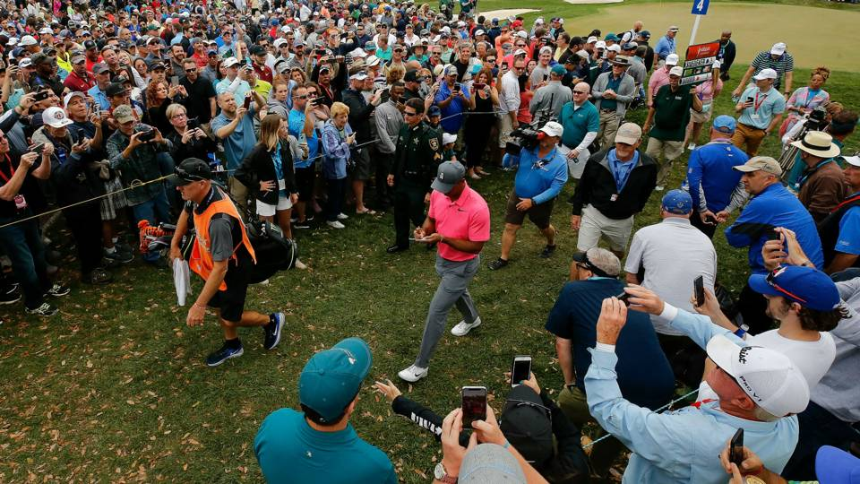 Valspar Championship: Tiger Woods 'proper there' entering final round