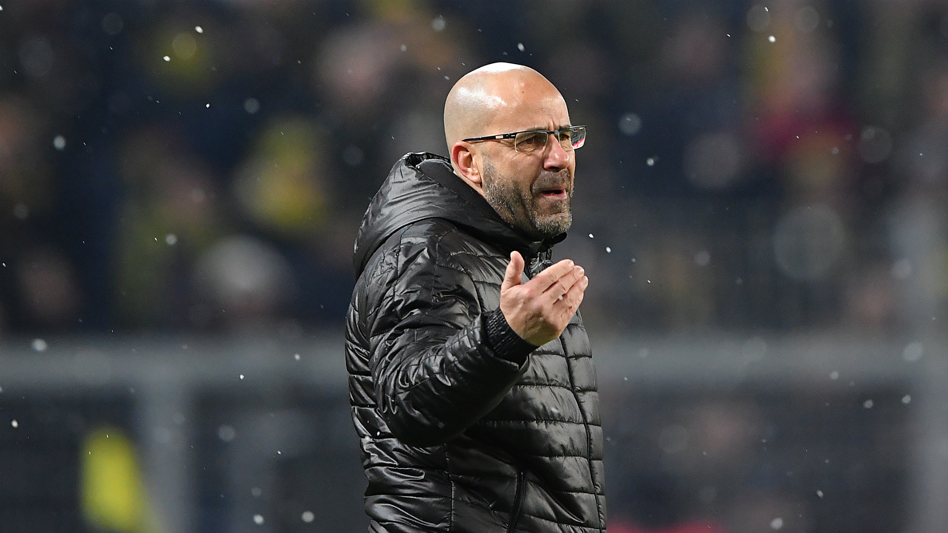 Borussia Dortmund sack coach Peter Bosz after terrible run