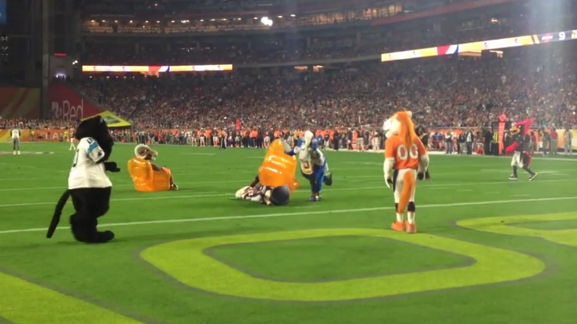 Colts Mascot Blue Beats Up Patriots Mascot With Inflatable