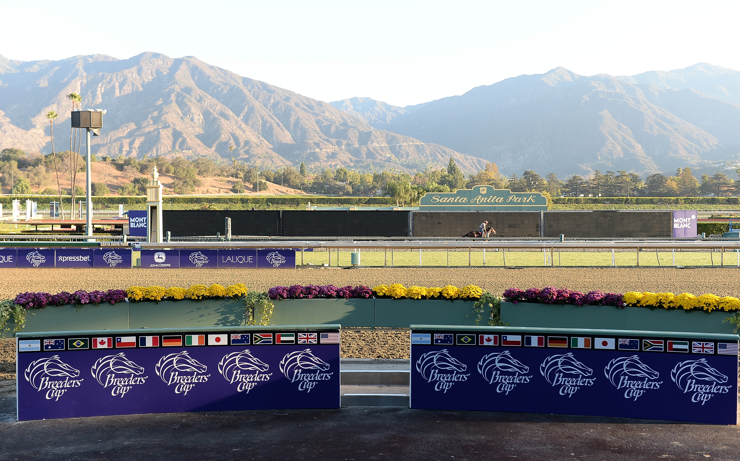 Santa Anita Sees 3rd Death In 9 Days 26th In 6 Months