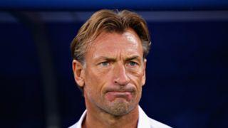 Morocco coach Herve Renard