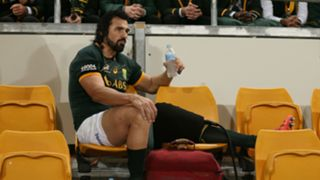 Victor Matfield - cropped