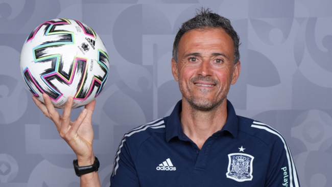 Spain head coach Luis Enrique has been kept busy in the run-up to the tournament