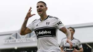 mitrovic - CROPPED