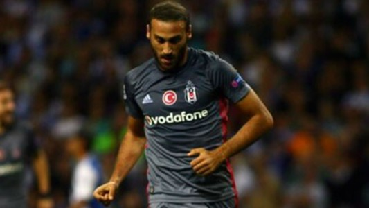 Tosun-Cropped