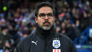 David Wagner - cropped
