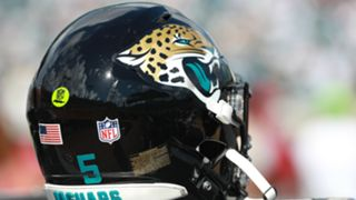 Jaguars-cropped