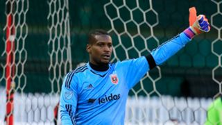 BillHamid - Cropped