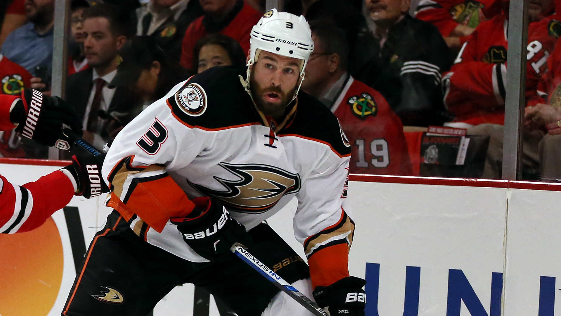new concept c0a4a 84a00 Ducks' Clayton Stoner fined $10K for killing grizzly bear ...