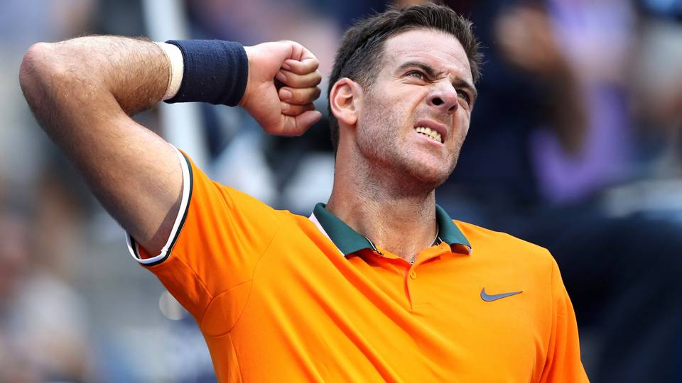 Juan Martin Del Potro continues to impress; Andy Murray bows out