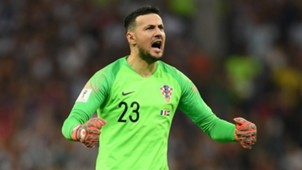 Danijel Subasic - cropped
