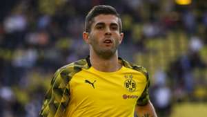 christian pulisic - cropped