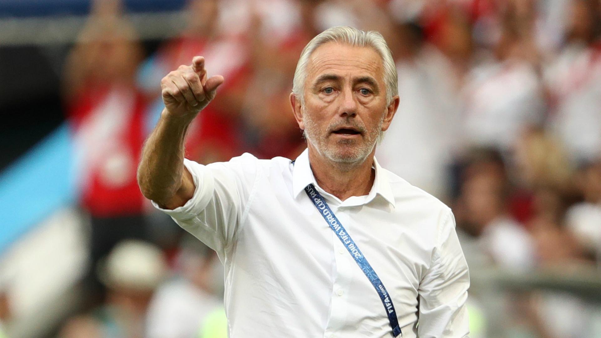 Former Socceroos coach Bert van Marwijk appointed by UAE