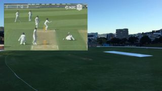 Otago cricket run out