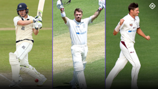 sheffield shield wrap