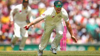 David Warner of Australia takes a catch