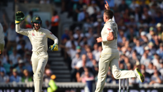 Tim Paine and Peter Siddle