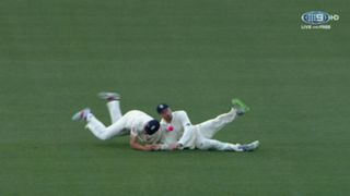 #cook vince catch