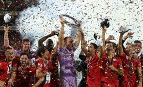 Champions of the A-League