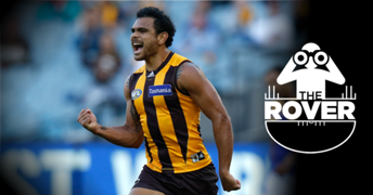 The Rover Rioli