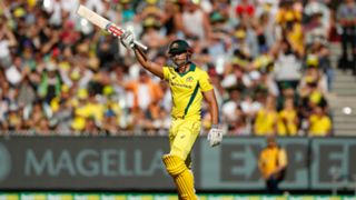 #marcus stoinis