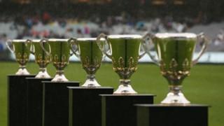 #AFL premiership cups cup grand final