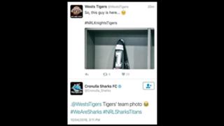 Sharks Tigers Banter