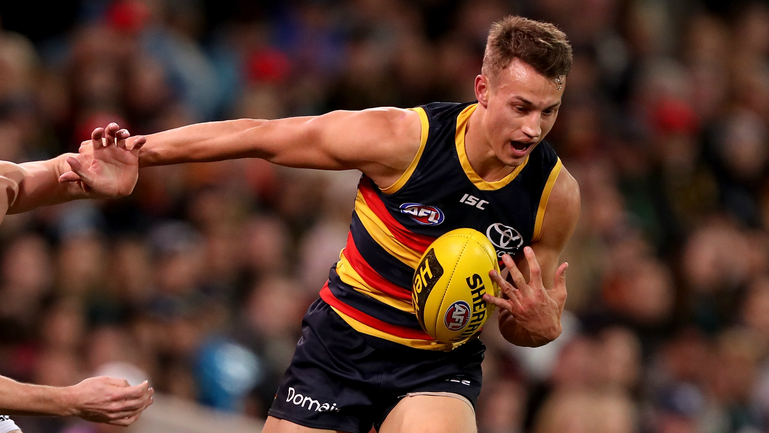 Tom Doedee injury: Adelaide Crows defender suffers suspected ACL | Sporting News