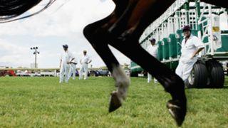 #horse racing barrier attendant