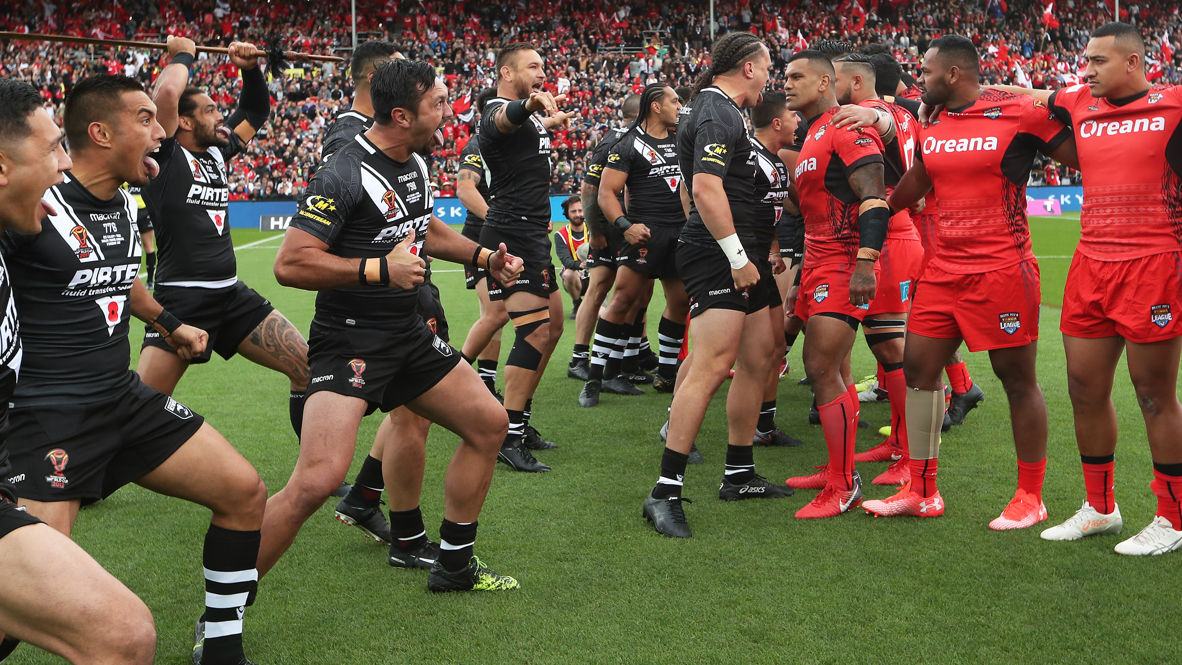 should we suspend nrl for an annual series between tonga