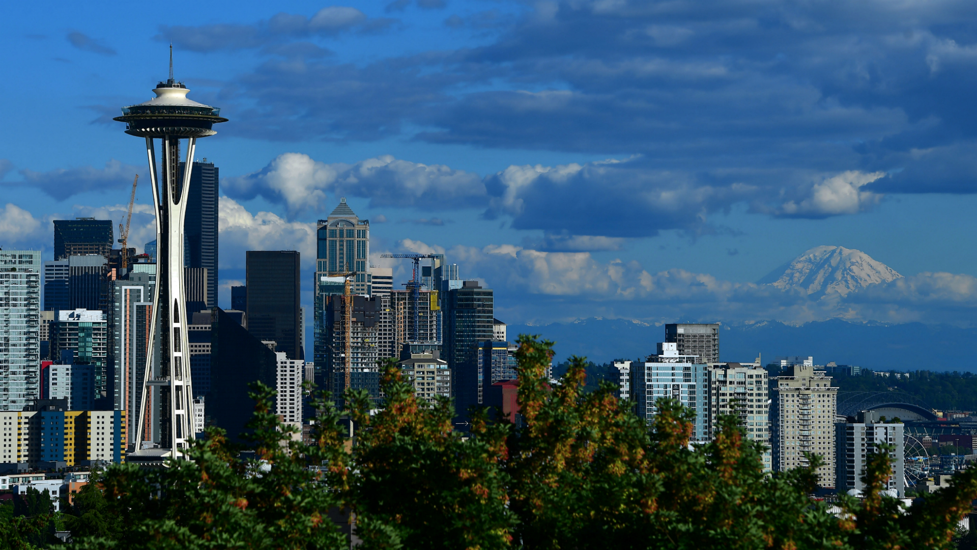Guessing the five NHL Seattle team name finalists, based on everything we know so far