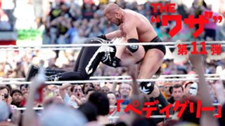 """WWE The""""ワザ"""" vol.11 ペディグリー トリプルH"""