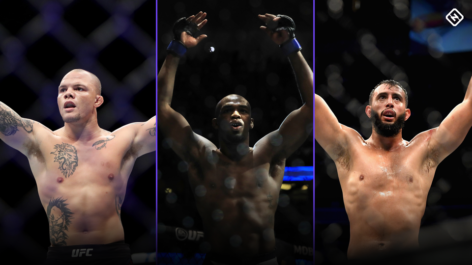 Examining the current state of the UFC's light heavyweight division