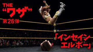WWE スーパースター カイリ・セイン インセイン・エルボー