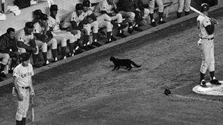 1969-Cubs-Getty-FTR.jpg