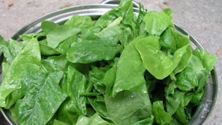 Spinach-WikiCommons-110615-FTR