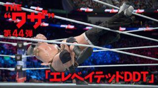 WWE, ワザ紹介, ランディ・オートン, エレベイテッドDDT