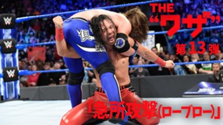 WWE Theワザ 中邑真輔 急所攻撃 ローブロー