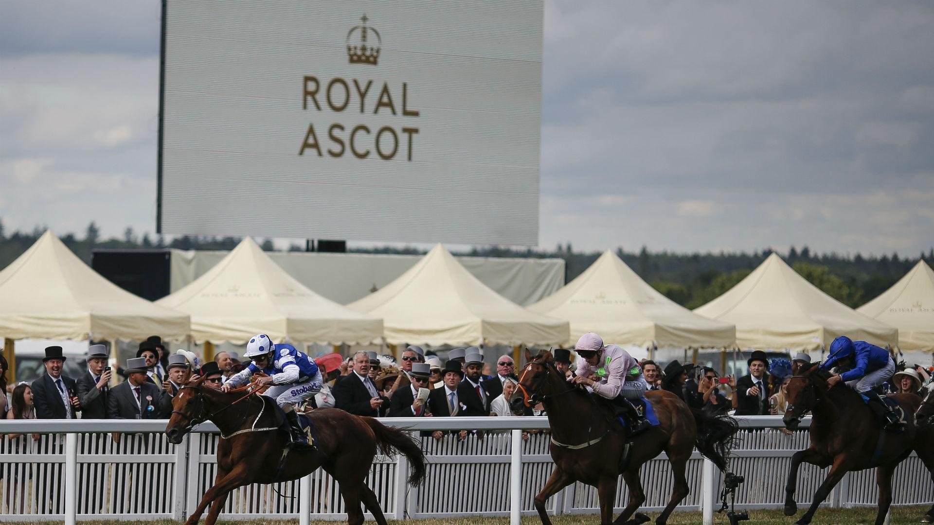 Horse runs race without jockey at Diamond Jubilee Stakes
