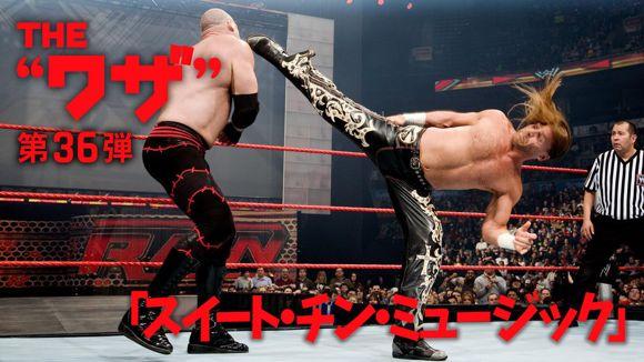 WWE スーパースター ワザ紹介 ショーン・マイケルズ スイート・チン・ミュージック