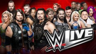 UK WWE Tours