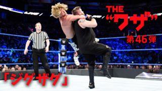 WWE, ワザ紹介, ドルフ・ジグラー, ジグザグ